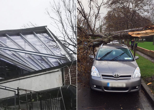 Damage caused by storm in Limerick Ireland